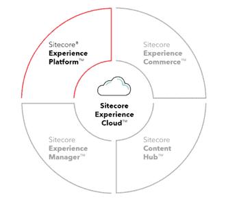 Sitecore maintenance service